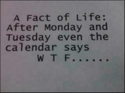 A fact of Life: After Monday and Tuesday even the calendar says W T F ...