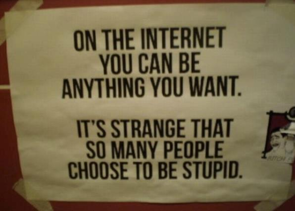 On the Internet you can be anything you want. It's strange that so many People choose to be stupid.